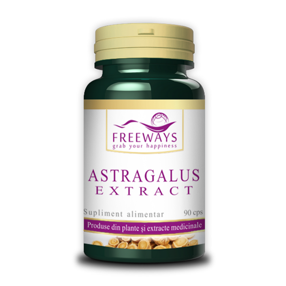Astragalus Extract (90 cps)