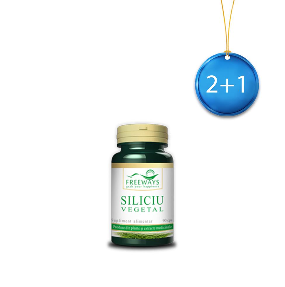 Vegetal Silica (90 cps) 2+1